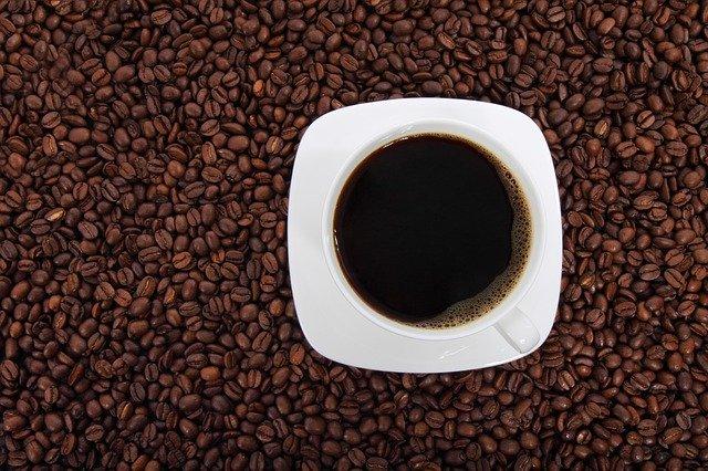 Conheça os principais tipos de cafés usados no dia a dia